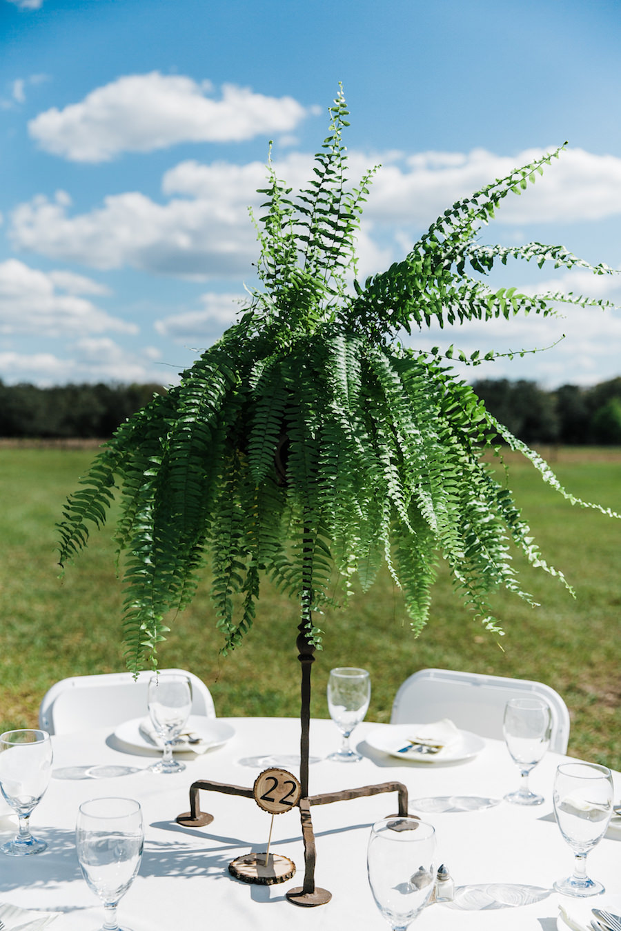 Tall Greenery Plant Wedding Centerpieces with Wooden Table Numbers   Rustic, Country Wedding Inspiration   Outdoor Tampa Bay Wedding Reception