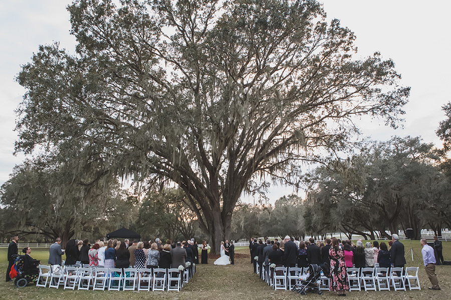 Outdoor Ceremony Under Tree at Tampa Bay Wedding Venue The Lange Farm with White Folding Chairs