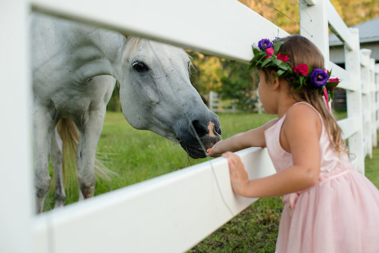 Outdoor Rustic Wedding Portrait of Flower Girl with Horse, wearing Blush Pink Dress and Purple, Red, and Pink Floral Crown with Greenery | Tampa Bay Wedding Photographer Caroline & Evan Photography | Outdoor Wedding Venue Southern Plantation Oasis