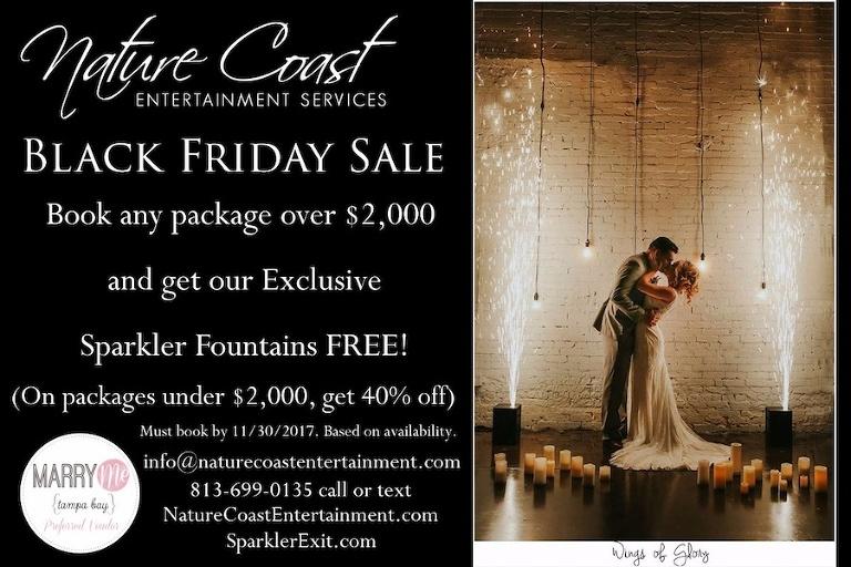 Naturecoast Entertainment Services Black Friday