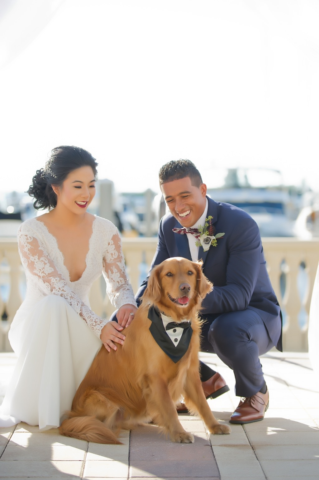 Wedding Ceremony Bride and Groom with Dog Portrait | Tampa Bay Wedding Photographer Andi Diamond Photography | Tampa Wedding Pet Coordinators Fairy Tail Pet Care