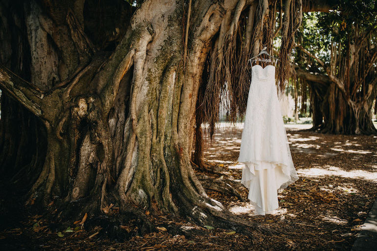 Strapless A Line Davids Bridal Wedding Dress on Customized Hanger in Banyan Tree