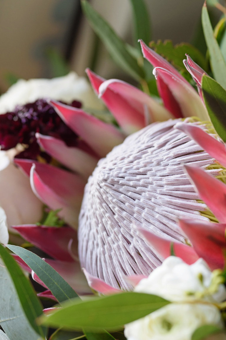 Pink Protea Wedding Bouquet Detail with White and Burgundy Floral and Greenery