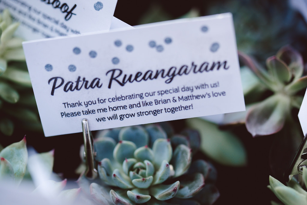 Succulent Wedding Favor with Guest Name and Thank You Note on White Card Printed in Blue