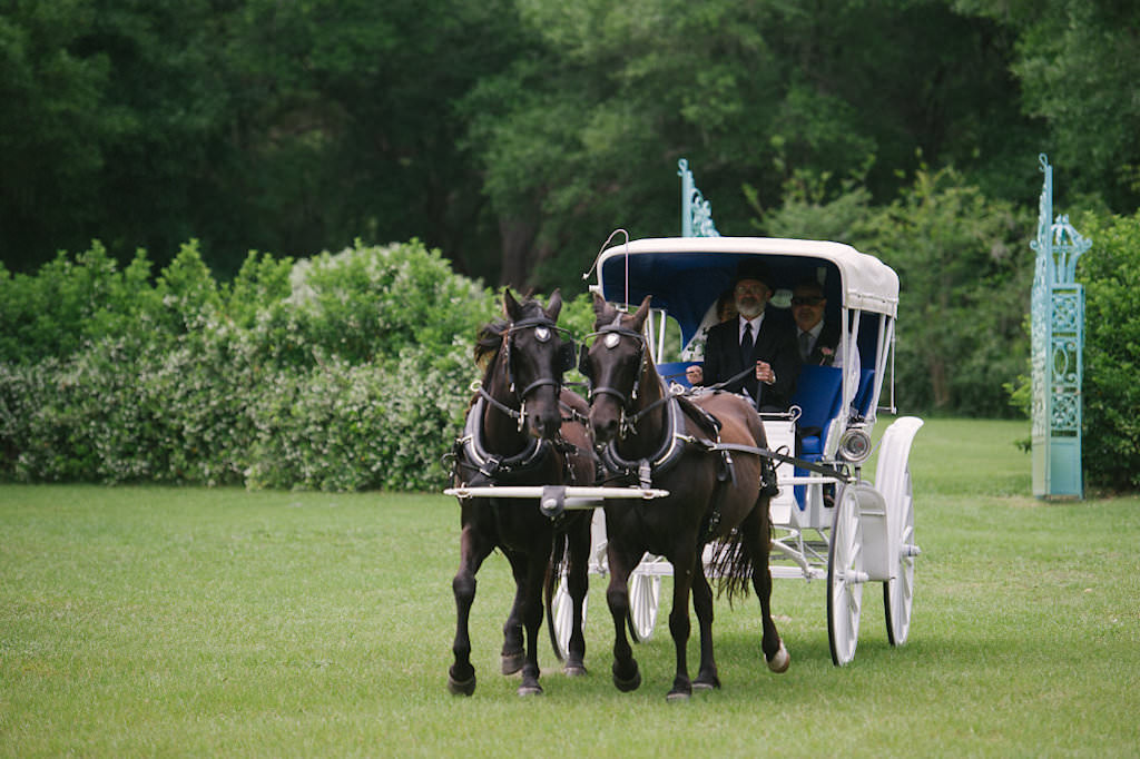 Rustic Florida Outdoor Wedding, Bride Arriving in Horse and Carriage to Wedding Ceremony | Tampa Bay Wedding Venue Lakeside Ranch