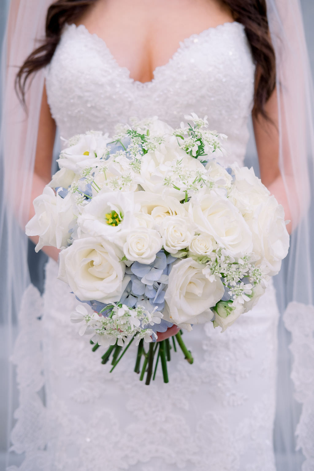 Florida Bride Wedding Portrait In Strapless Sweetheart Lace Fitted