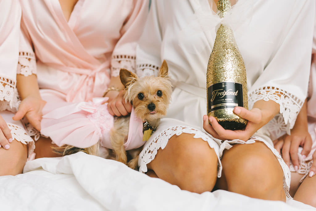 Bride and Bridesmaids Getting Ready Wedding Portrait with Dog and Bottle of Glitter Gold Champagne   Tampa Wedding Photographer Kera Photography