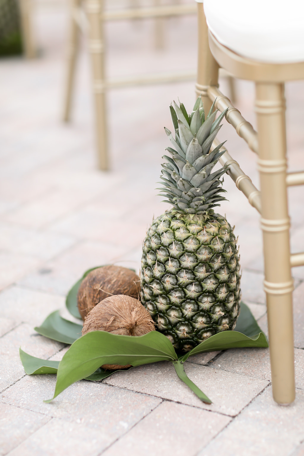 Tropical Elegant Wedding Ceremony Decor, Coconuts and Pineapples on Monstera Palm Leaf   Tampa Bay Wedding Photographer Lifelong Photography Studios