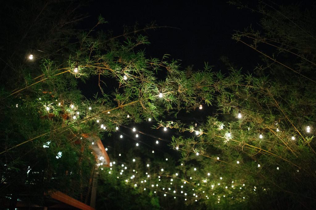 Romantic Nighttime Outdoor Bamboo Courtyard | Historic Downtown St. Pete Wedding Venue NOVA 535