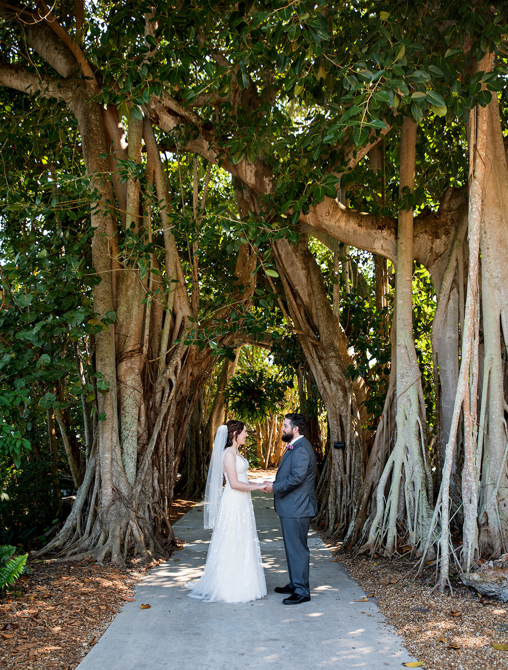 Outdoor Tampa Bay Bride and Groom First Look Wedding Portrait Under Banyan Trees | Sarasota Wedding Venue Marie Selby Botanical Gardens