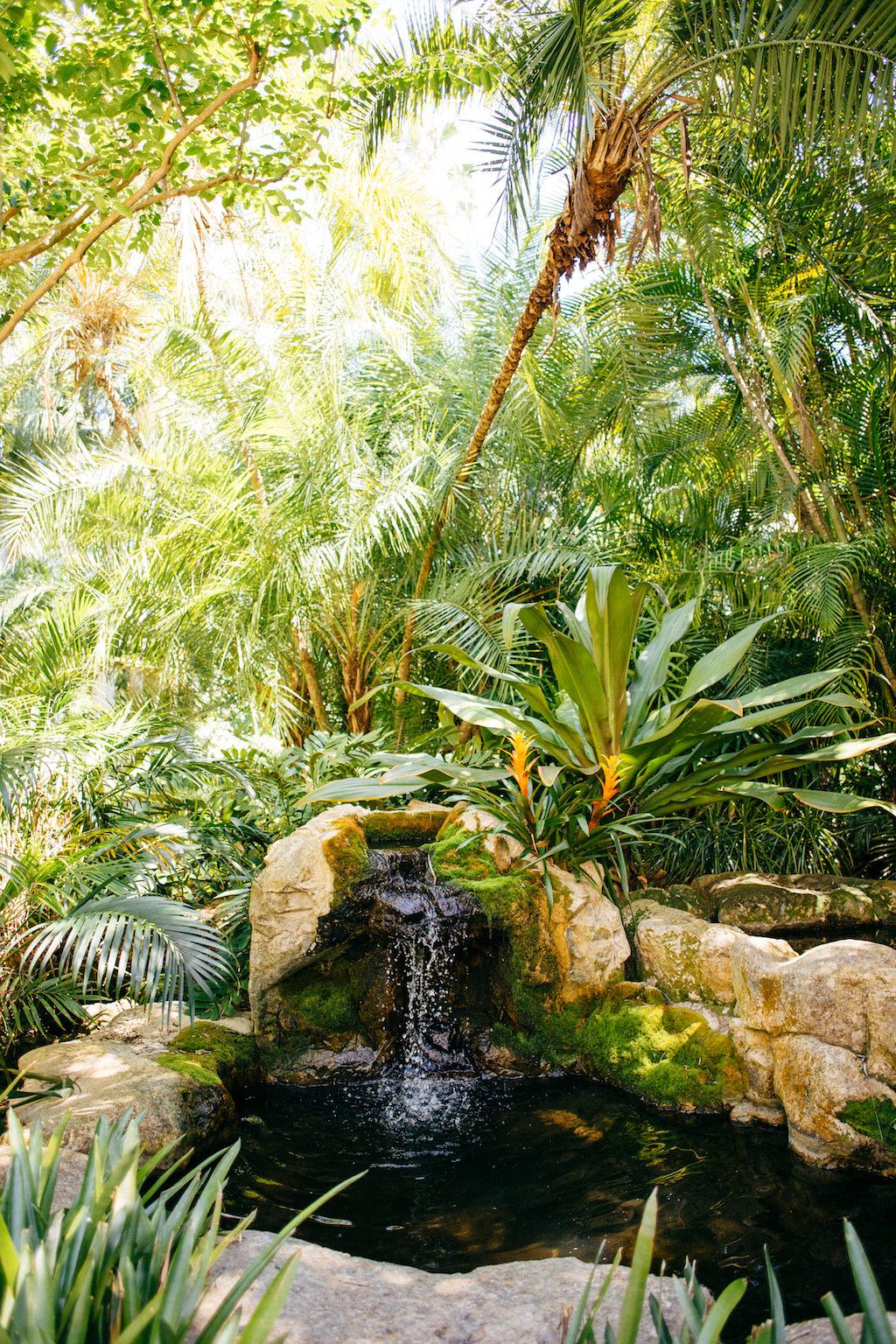 Outdoor Tropical Inspired St. Pete Wedding Venue | Sunken Gardens