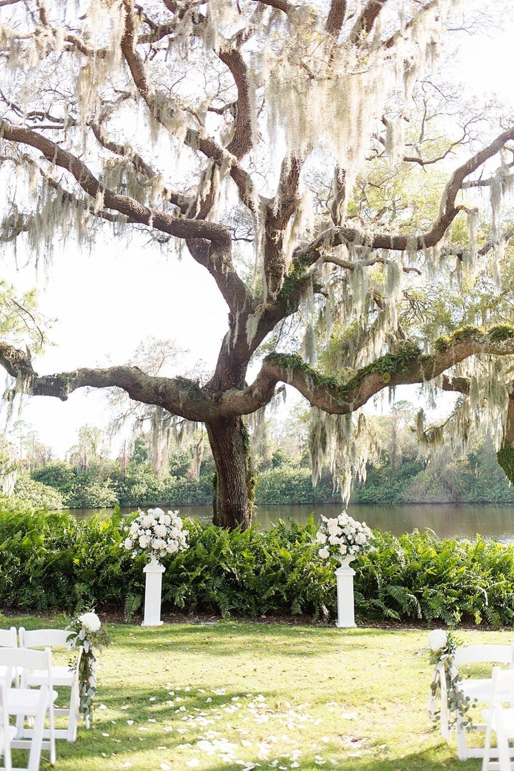 INSTAGRAM ROUND UP Outdoor Rustic Elegant Wedding Ceremony Under Tree, White Pedestals with White Floral Arrangements | Palm Harbor Wedding Venue Innisbrook Golf and Spa Resort