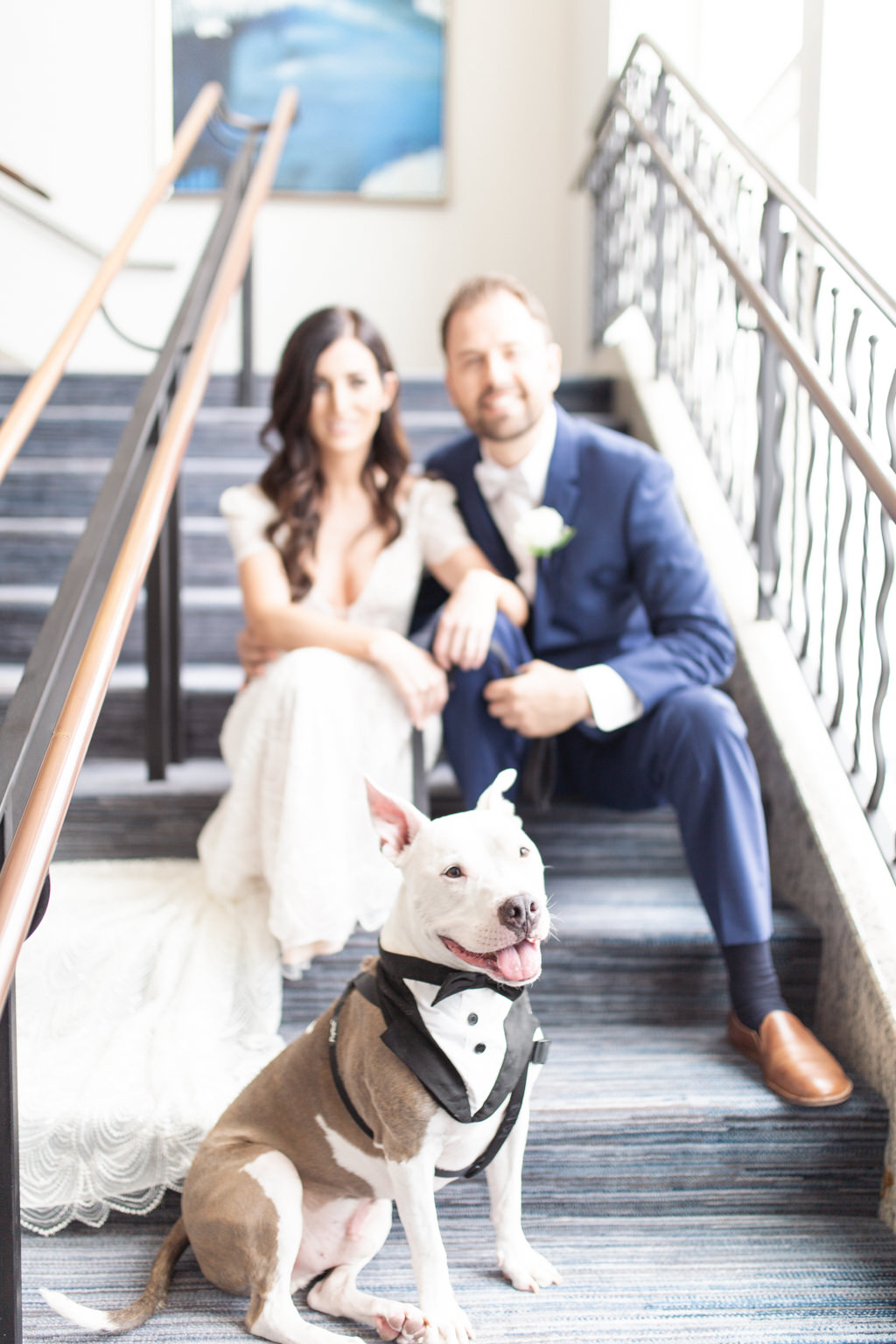Florida Bride and Groom with Pitbull Dog in Tuxedo Wedding Portrait on Marriott Hotel Staircase   Tampa Wedding Pet Planner FairyTail Pet Care