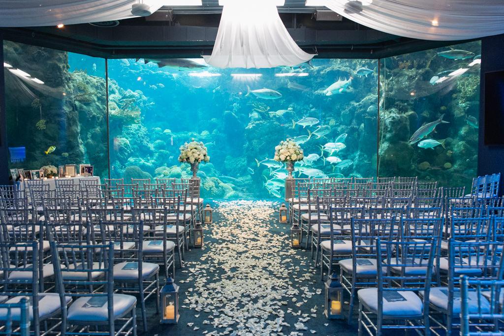Unique Wedding Ceremony Decor at Downtown Tampa Florida Aquarium, Silver Chiavari Chairs, Lanterns, Flower Petal Aisle Runner, Pedestals with Floral Arrangements, White Linen Draping
