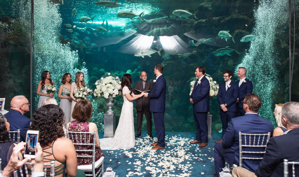 Bride and Groom Exchanging Vows During Wedding Ceremony at Unique Downtown Tampa Venue The Florida Aquarium, Silver Pedestals with White Floral Arrangements and Flower Petal Aisle Runner