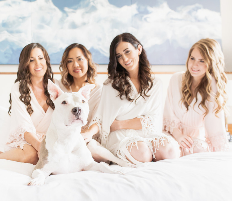 Tampa Bride, Bridesmaids in Matching Blush Pink Robes and Dog on Hotel Bed Getting Wedding Ready Portrait | Wedding Hair and Makeup Femme Akoi | Wedding Pet Planner FairyTail Pet Care