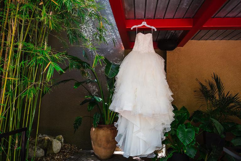 Modern Wedding Dress Hanging in Tropical Florida Garden, White Ballgown David's Bridal Strapless Wedding Dress