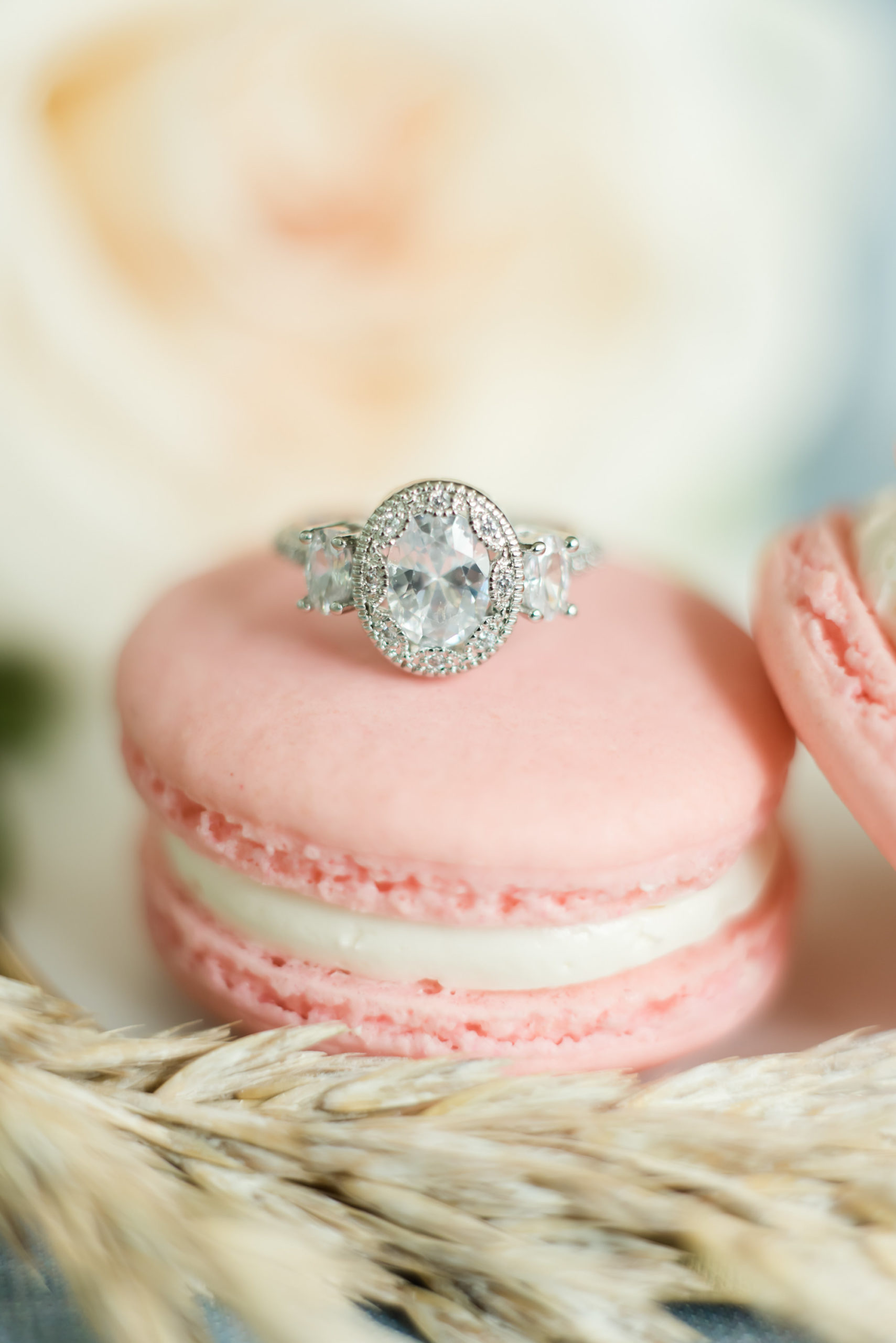 Oval Diamond Engagement Ring Sitting on Dusty Rose Macroon   Tampa Bay Wedding Planner Elegant Affairs By Design