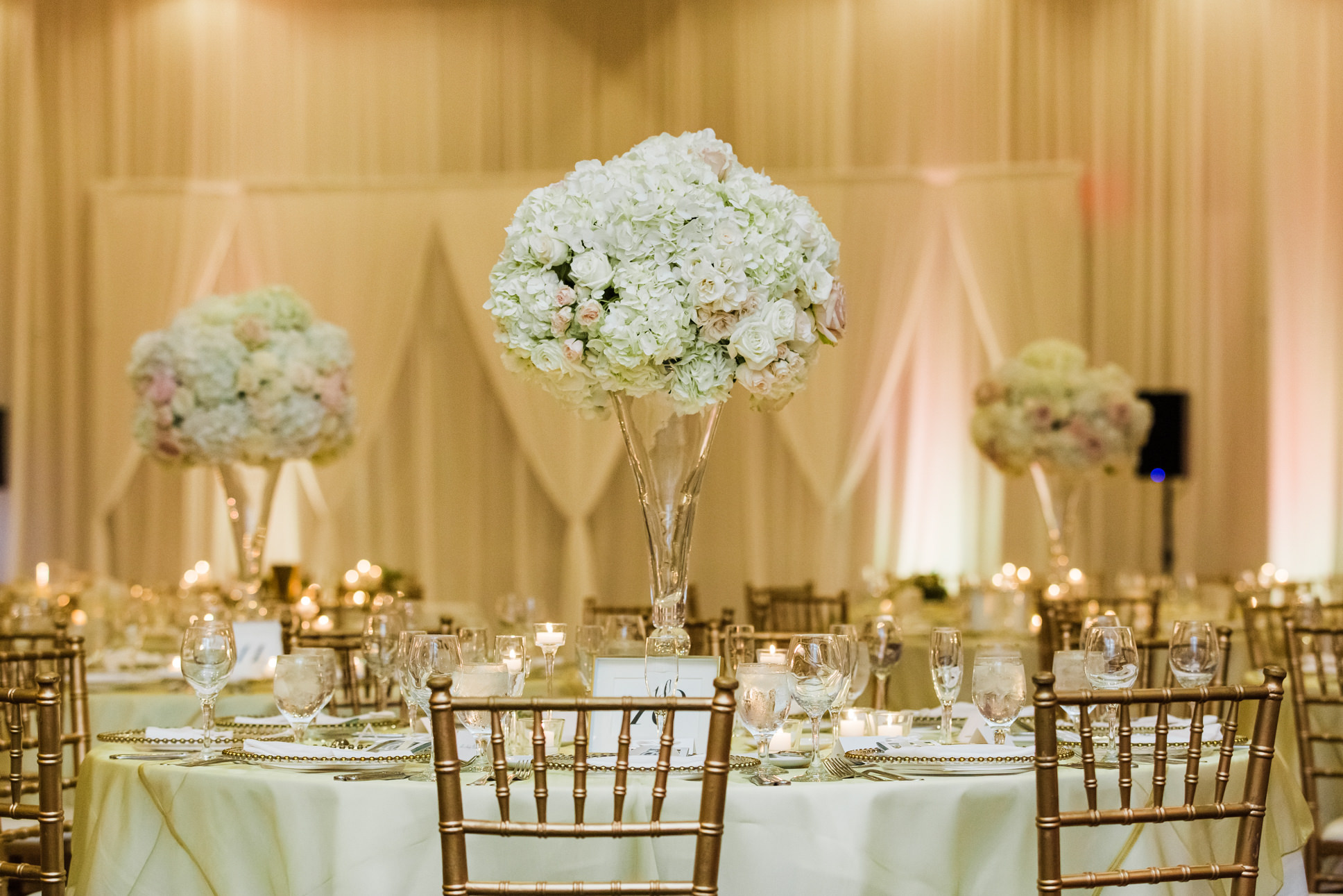 Elegant Ballroom Wedding Reception Decor, Gold Chiavari Chairs, White Hydrangeas and Blush Pink Roses Floral Arrangement on Glass Vase Centerpiece   Florida Tropical Hotel Wedding Venue The Vinoy Renaissance St. Petersburg Resort & Golf Club