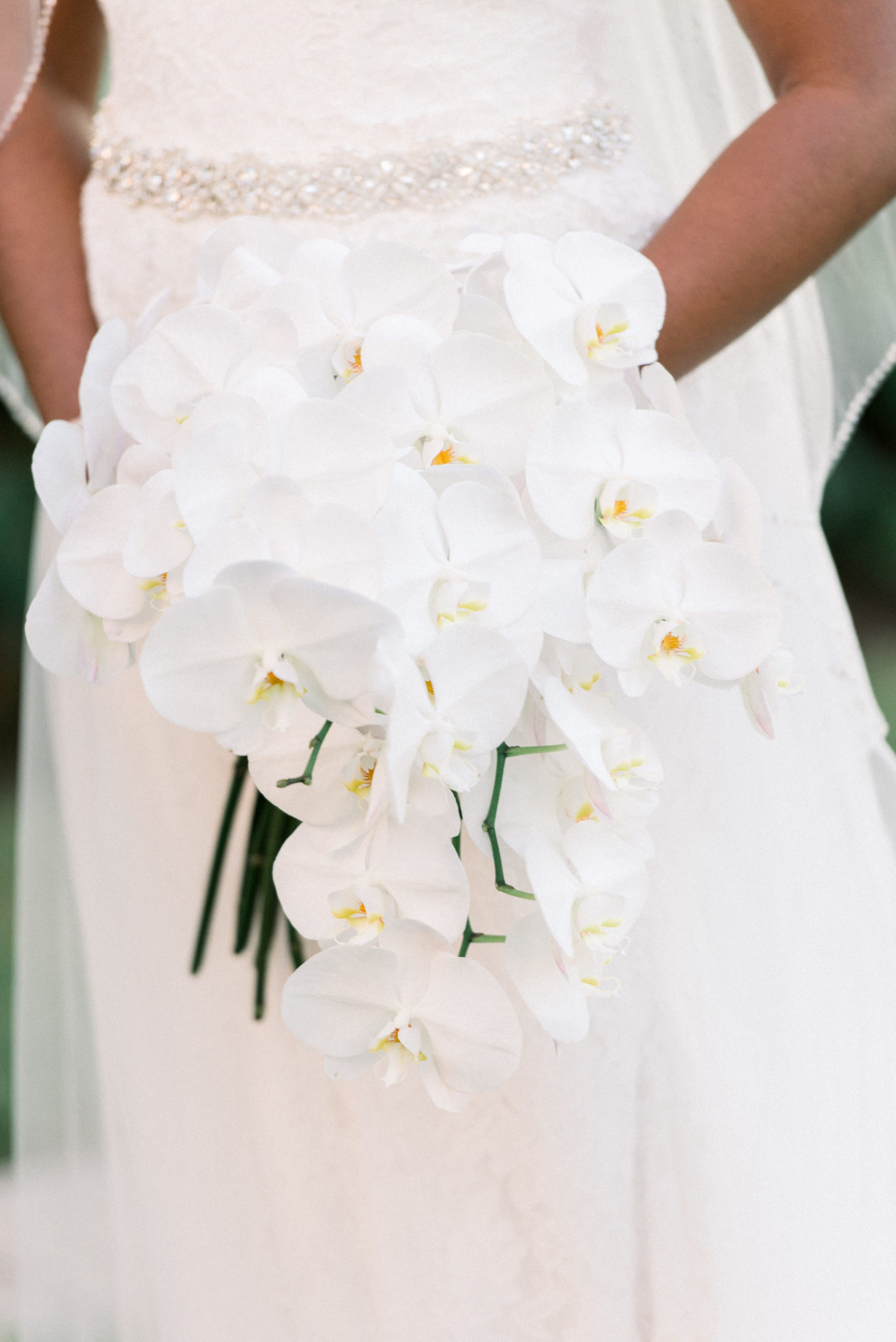 Classic White Orchid Bridal Floral Bouquet | Tampa Wedding Planner Special Moments Event Planning