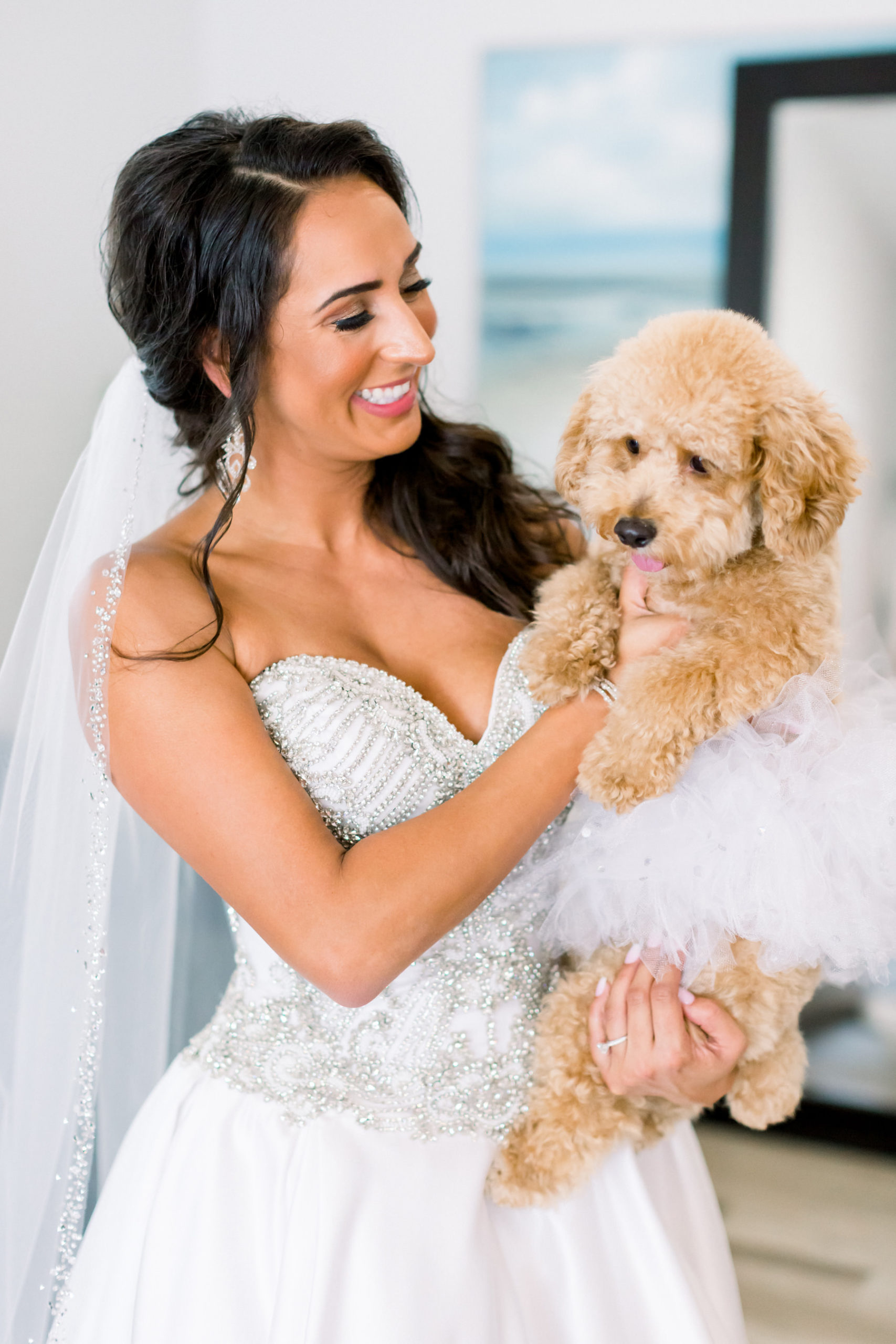 Florida Bride in Sweetheart and Strapless Rhinestone Bodice with Ballgown Skirt Wedding Dress Holding Pet Dog Poodle Portrait | Tampa Bay Wedding Photographer Shauna and Jordon Photography | Pet Planner FairyTail Pet Care | Wedding Dress Truly Forever Bridal
