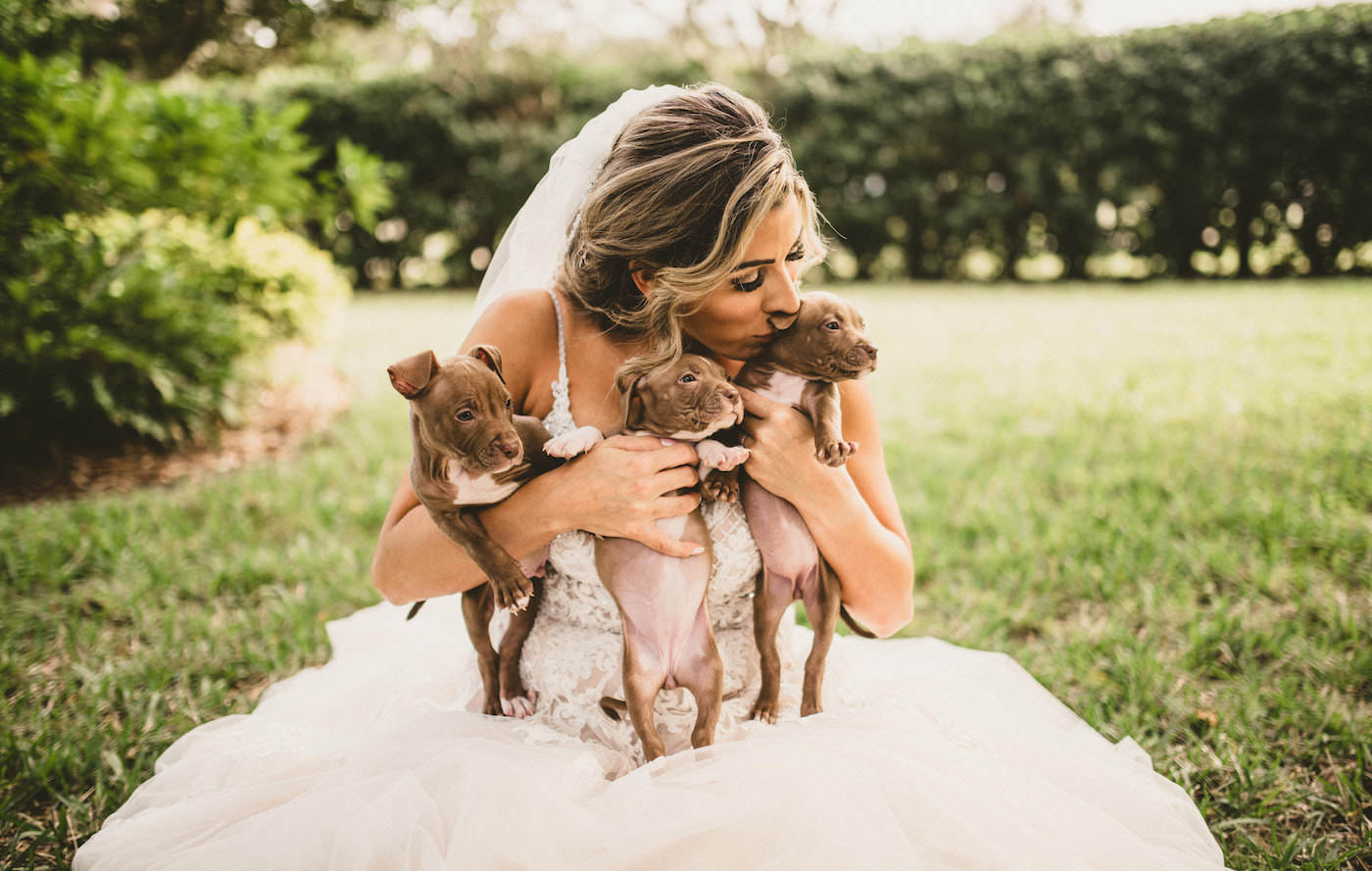 Tampa Wedding with Adoptable Puppies | Bride Kissing a Puppy Dog | Puppy Instead of Bridesmaid Bouquet