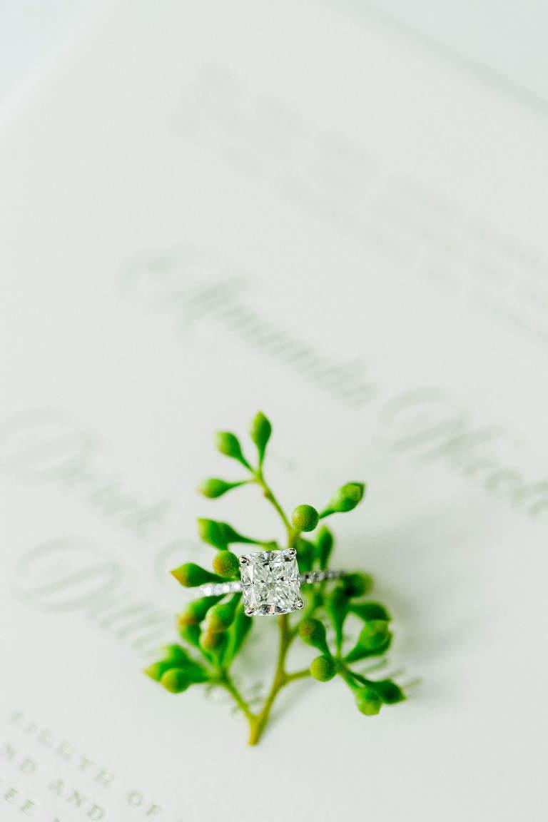 Florida Engagement Wedding Ring, Emerald Cut Diamond with Succulent Backdrop