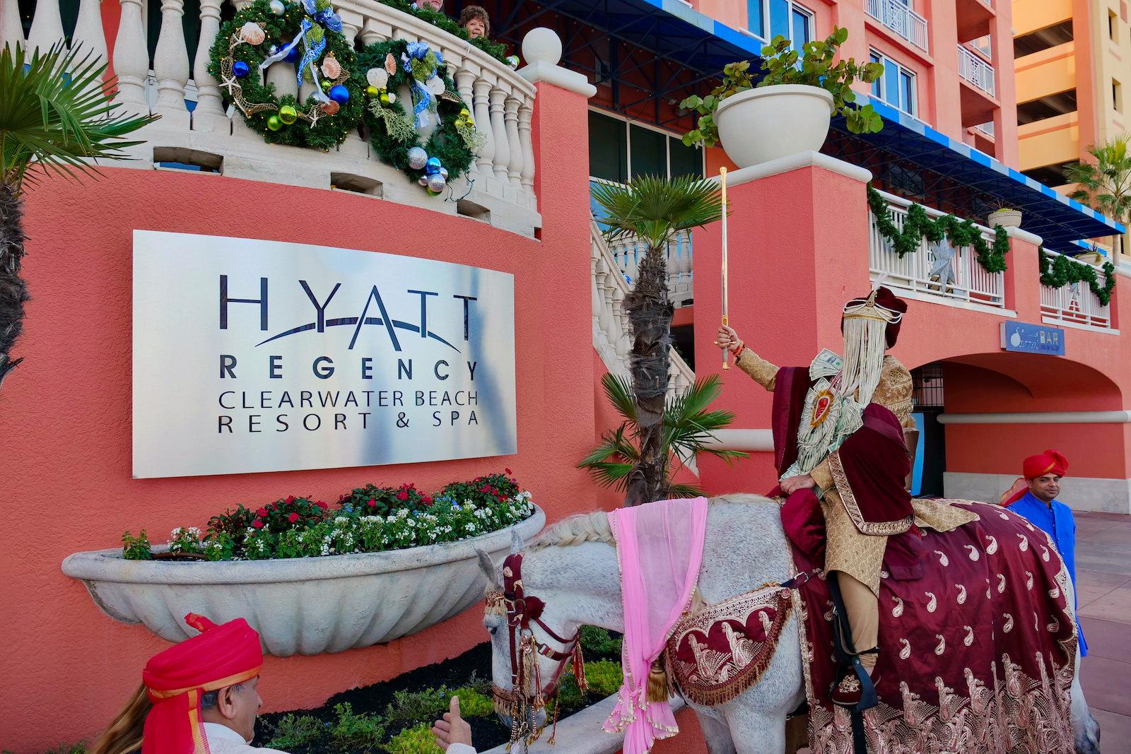 Clearwater Florida Indian Wedding | Groom White Horse Baraat Beaded Sehra | Clearwater Wedding Venue Hyatt Regency Clearwater Beach Resort and Spa