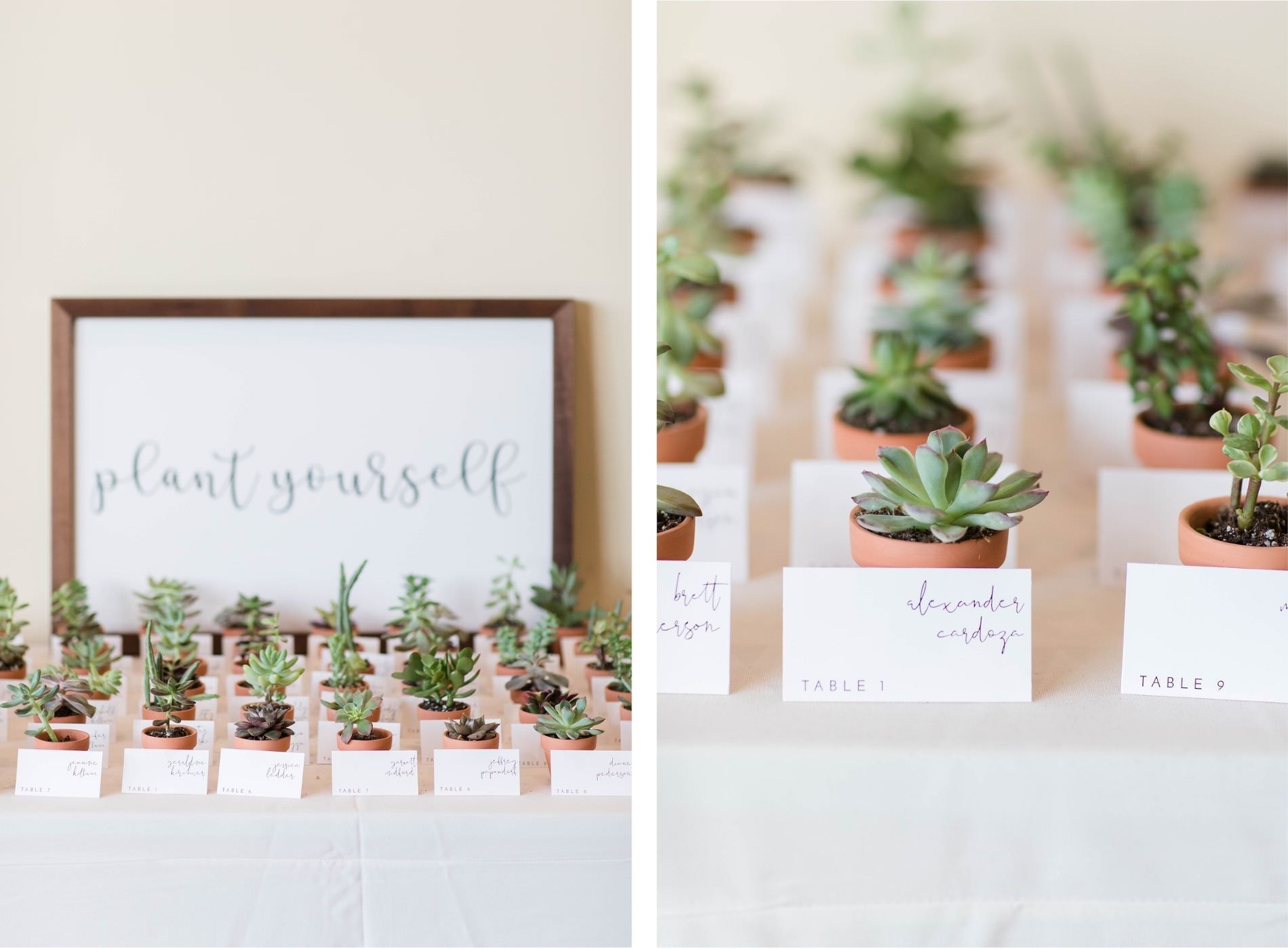 Natural Green And White Wedding Favor Inspiration Plant Yourself Escort Card Display Wedding Seating Chart Potted Succulent Cactus Cacti Wedding Favor Escort Cards Marry Me Tampa Bay Local