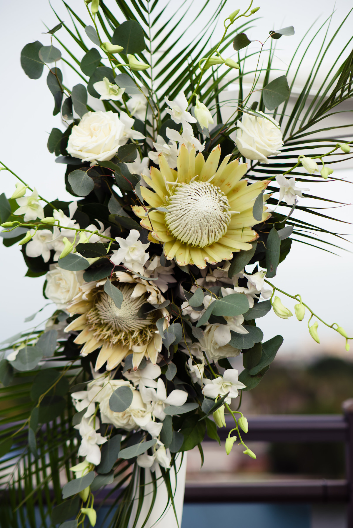 Neutral Boho Wedding Ceremony Decor, White and Yellow King Proteas, White Roses, Eucalyptus, Palm Fronds, White Orchids Wedding Floral Arrangement | Tampa Bay Wedding Planner Perfecting the Plan | Wedding Florist Iza's Flowers