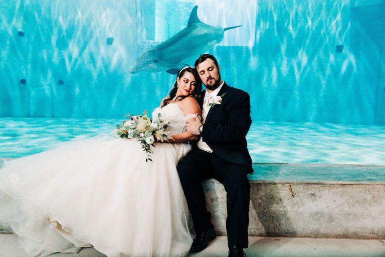 Unique Waterfront Tampa Bay Non-Profit Wedding Venue | Clearwater Marine Aquarium