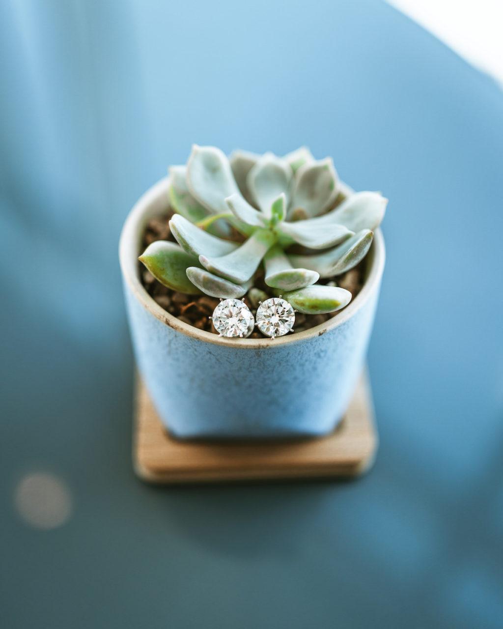 Succulents and Wedding Diamond Stud Earrings