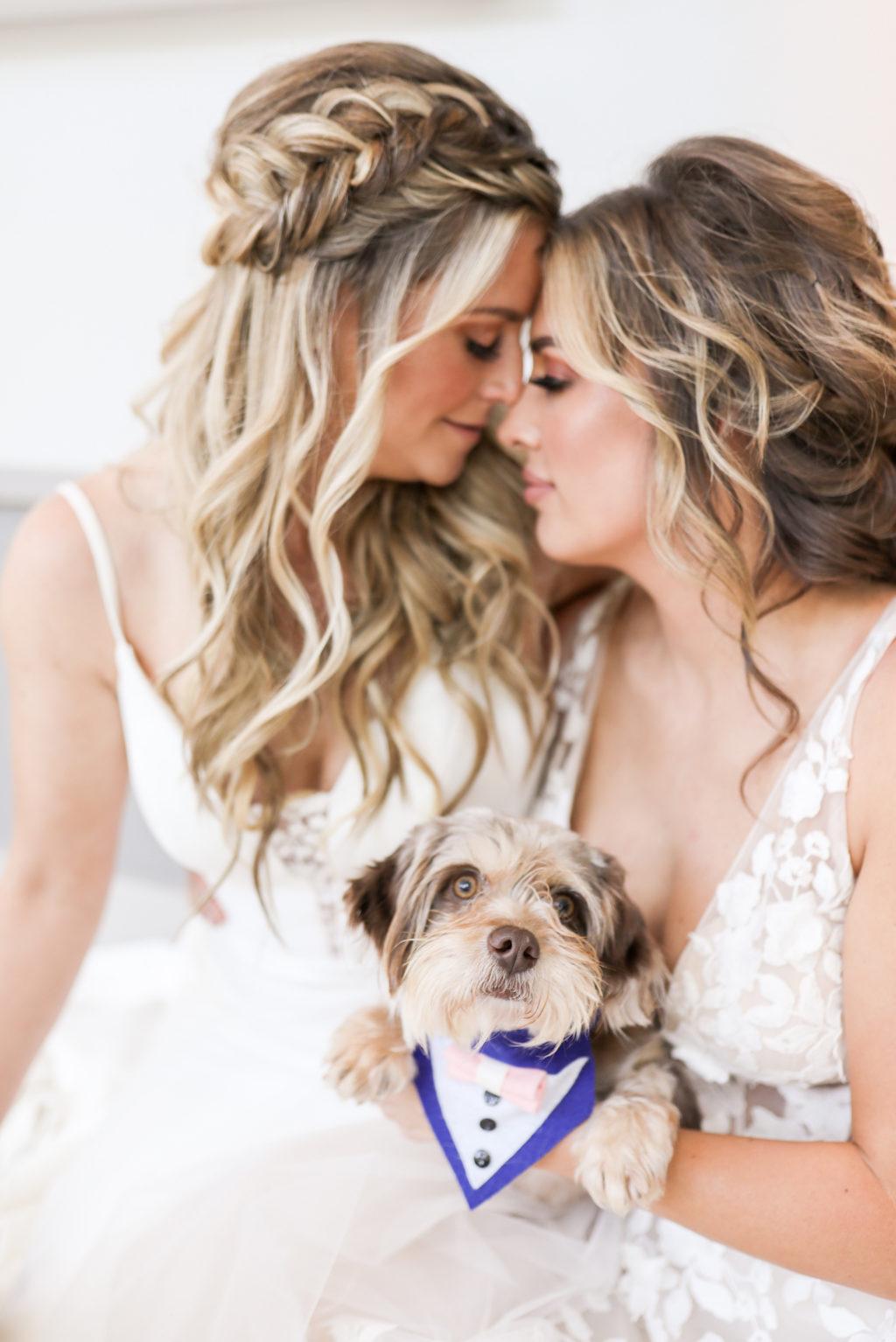 LGBTQ+ Gay Pride Wedding, Lesbian Brides in Boho Braided Hair Holding Dogs with Blue Tuxedos